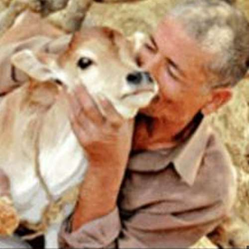 Afaq-ali-departs-from-wife-for-cows